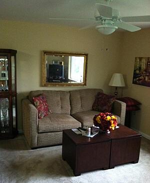 St. Paul Village - Living Room