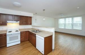 Living room & Kitchen-1
