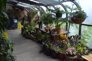 Prairie Oaks - Greenhouse